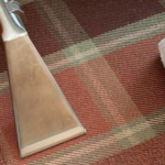 Carpet Cleaning Rug