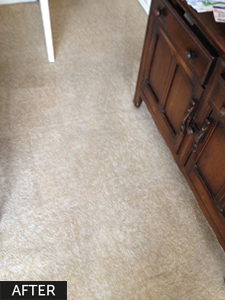 carpets-after-professional-cleaning