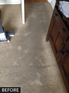 carpets-prior-to-cleaning